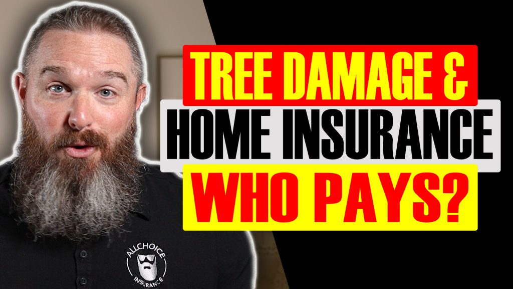 will insurance cover tree removal